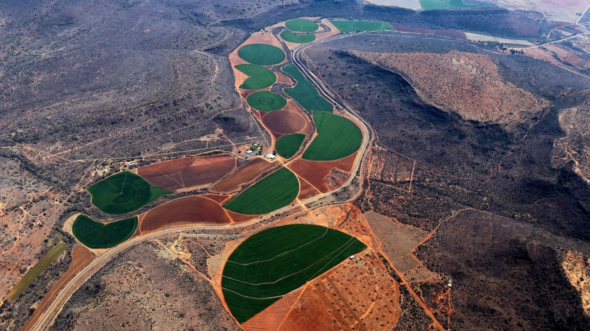 Aerial view of brown and green irrigated crops in South Africa